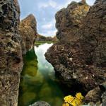 Rocks XII